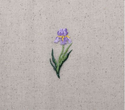 Single Lavender Iris Flower
