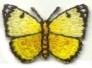 BUTTERFLY YELLOW AND BLACK IRON ON PATCH 240141-A