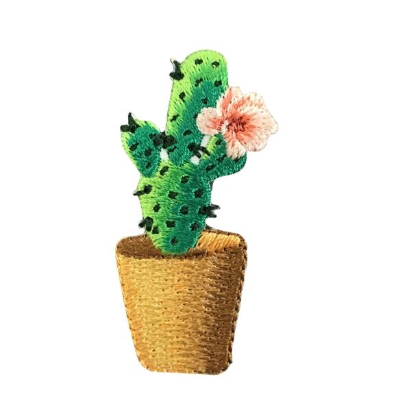 Cactus - Pink Flower