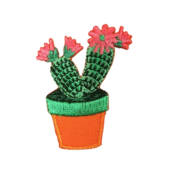 Cactus - Pink Flowers