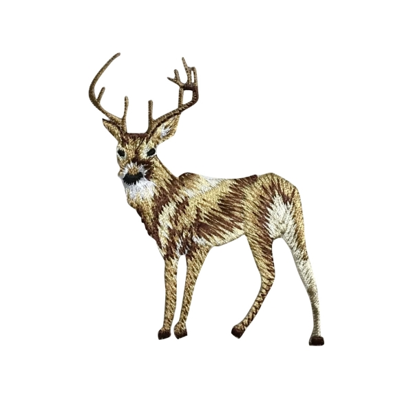 White Tail Deer - Large