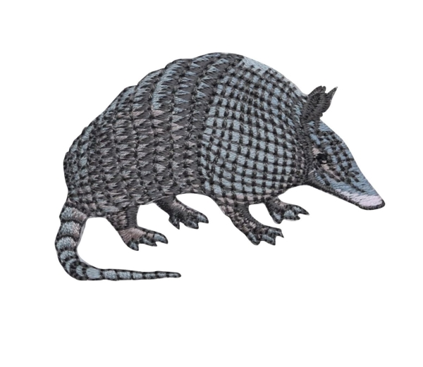 Nine Banded Armadillo - Facing Right