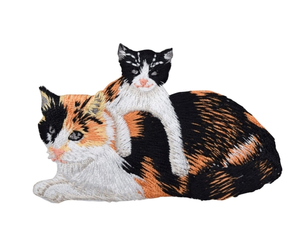 Calico Mother Cat and Kitten