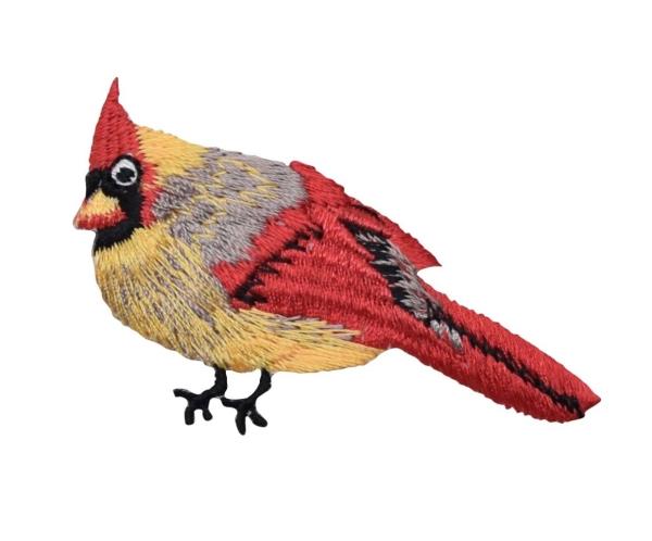 Red Female Cardinal Bird Facing Left