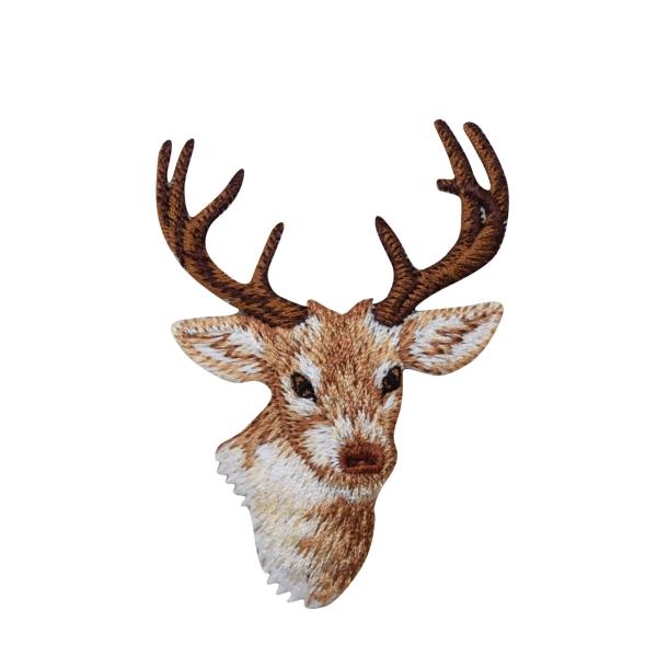 Natural Buck Mule Deer Head