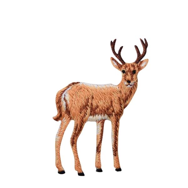 Natural Buck Deer Full Body