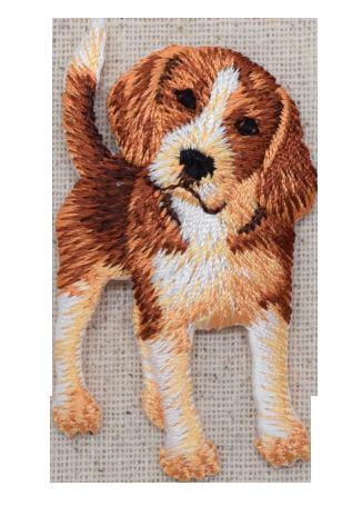 Full Body Beagle Standing