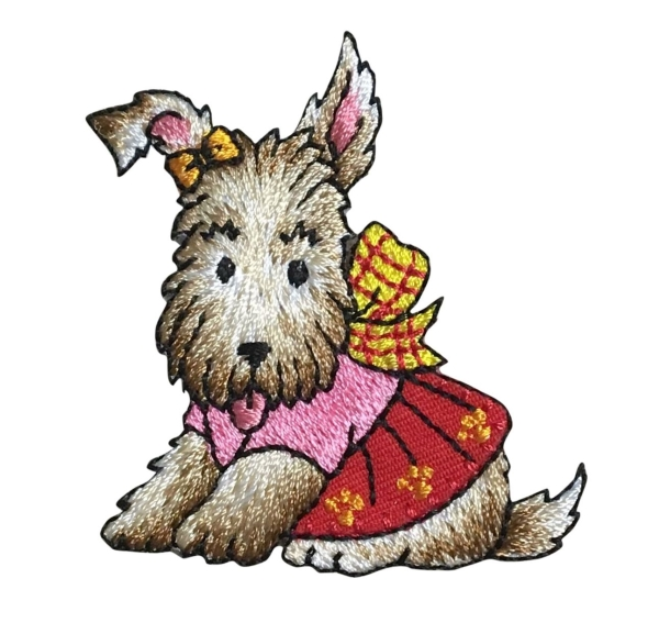Terrier/Dog With Outfit