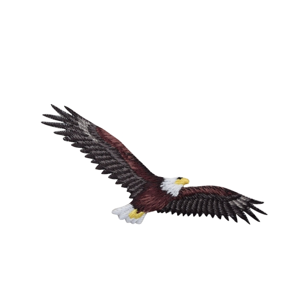 Eagle Soaring with Wings Spread