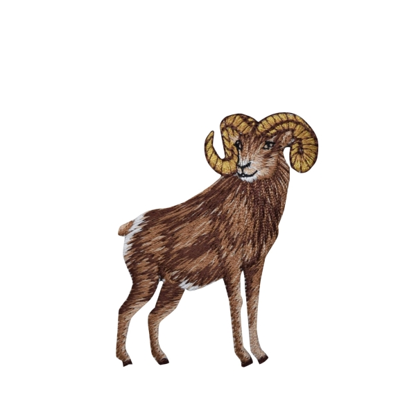 Natural Ram standing right