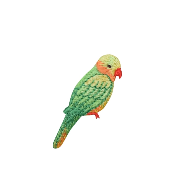 Yellow Headed Amazon Parrot Bird