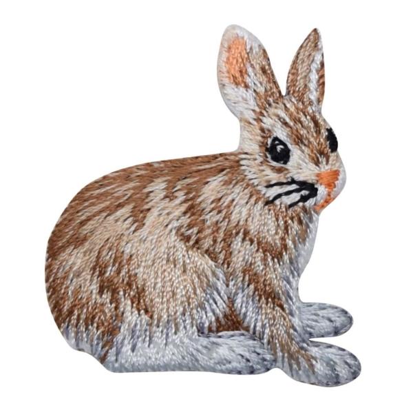 Natural Rabbit Hare
