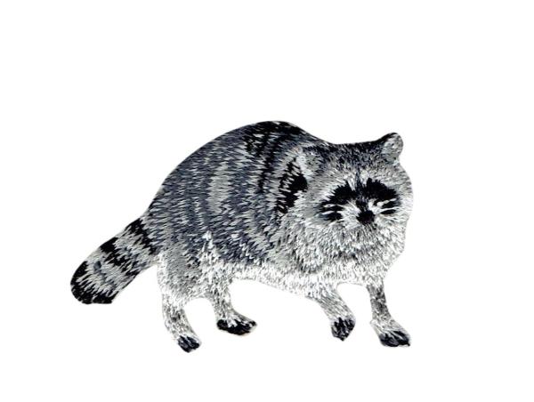 Natural Raccoon