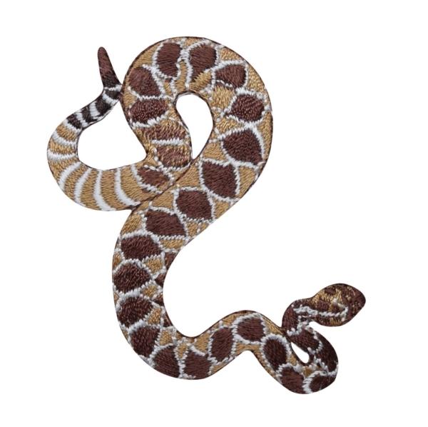 Western Diamond Back Rattle Snake