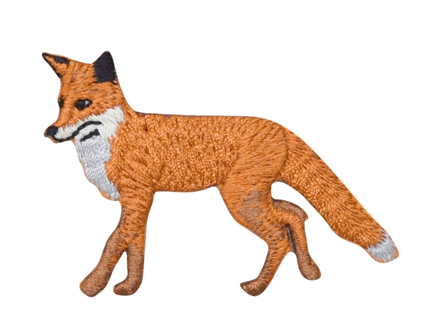 Red Fox Walking Left