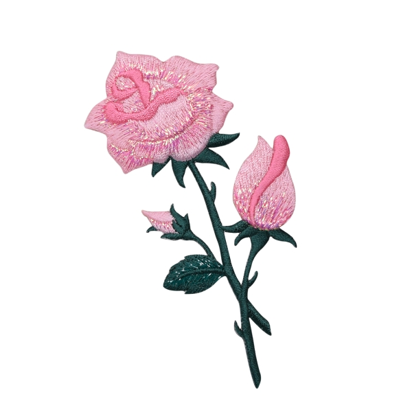 Pink Rose with open Petals and Stem