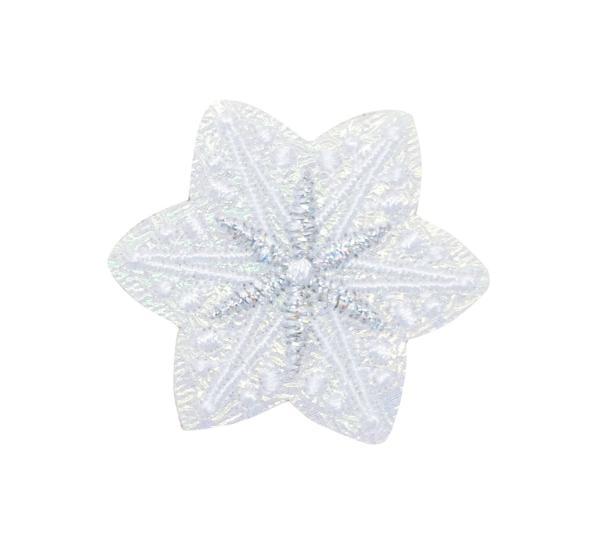 white iridescent snowflake