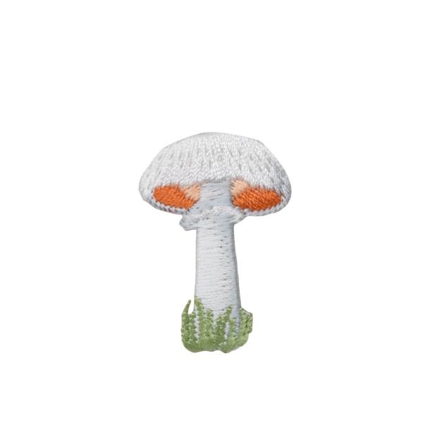 White Mushroom with Grass