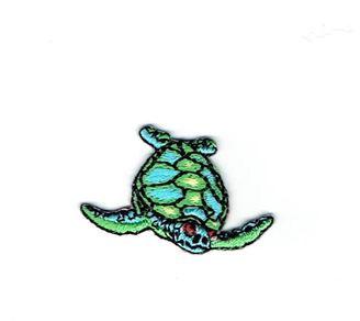 Small Sea Turtle Facing Right