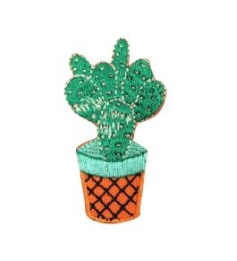 Cactus - Orange Pot