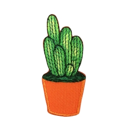 Cactus - Orange Pot