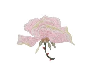 Large Single Pink Rose Flower