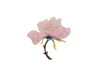 Small Pink Rose Flower