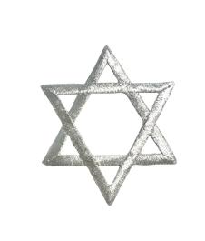 Star of David - L Silver