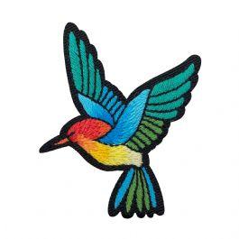 Jewel-tone Hummingbird