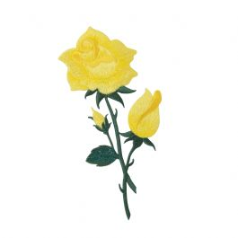 Large Yellow Shimmery Rose