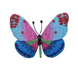 Butterfly - Blue/Pink
