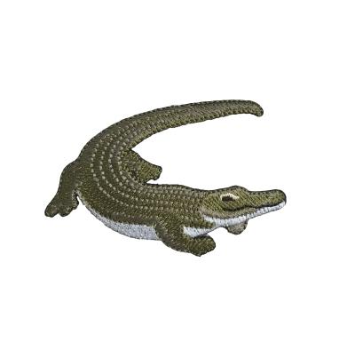 Natural Crocodile - Green/White