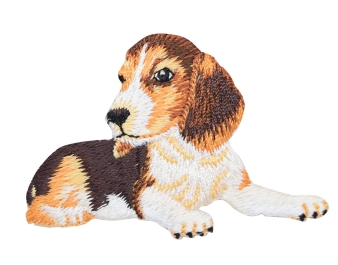 Beagle - Puppy Dog