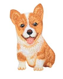Corgie Puppy Dog