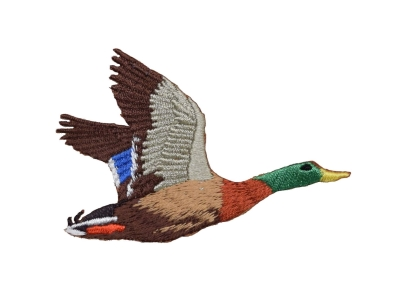 Flying Mallard Duck - Right