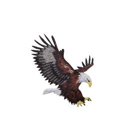 American Bald Eagle Landing