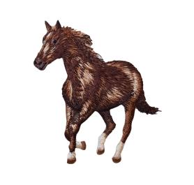 Galloping Horse