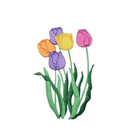 Large - Tulip Flowers