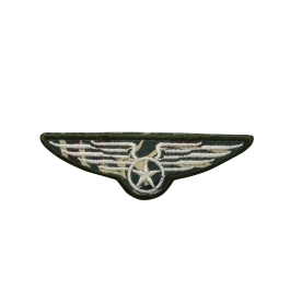 Military Wings