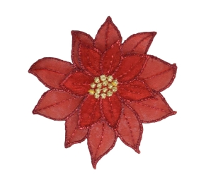 Small Red Poinsettia Flower