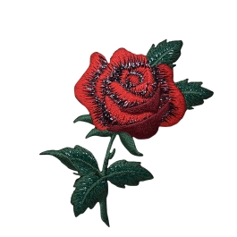 Single Red Rose with Open Petals and Stem