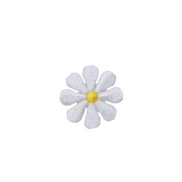 Small White Daisy Flower