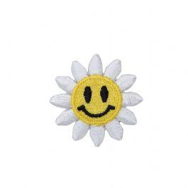 Smiling Daisy Flower