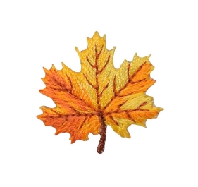 Yellow and Orange Autumn Leaf